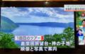 NHKにて弊社プロデュースのオンラインガイドツアーが紹介されました!